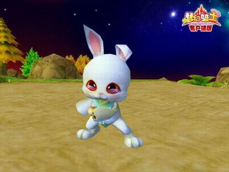 谁家可爱小萌兔?