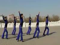 独家内容 2013现代舞蹈教学视频动作分解 蓝色