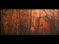 王祖贤/09 青蛇 完整版 王祖贤 张曼玉导演徐克/青蛇电影超清完整版
