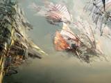 《激战2》四风节日主题活动桌面壁纸下载