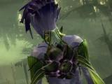 《激战2》龙祸迫近版本最新游戏截图