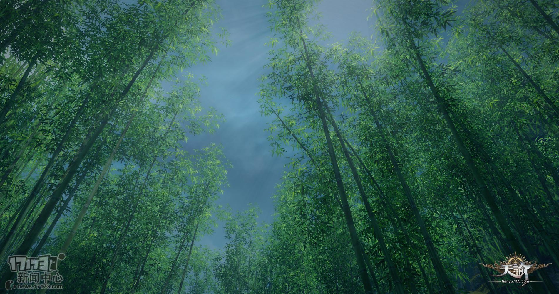 壁纸 风景 植物 桌面 1902_1002